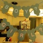 cute theme- gender reveal party