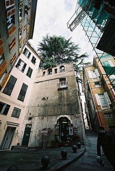 Genova up?
