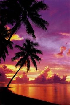 Tahitian Sunset- The most beautiful place in the whole ENTIRE UNIVERSE!