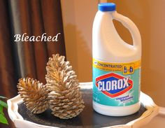 Try peroxide instead of bleach. Mix with unbleached cones. Just Judy : Decorating with pine cones Try peroxide instead of bleach. Mix with unbleached cones. Just Judy : Decorating with pine cones Nature Crafts, Fall Crafts, Diy Crafts For Kids, Holiday Crafts, Holiday Decor, Craft Ideas, Bleach Pinecones, Painted Pinecones, Pine Cone Art