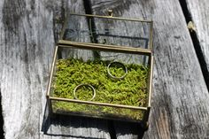glass ring box, moss pillow, rustic wedding, same sex marriage