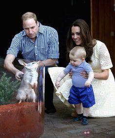 Los Duques de Cambridge con el Príncipe Jorge en un zoo de Sidney