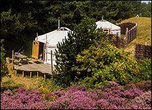 Slapen in een Mongoolse Yurt op Texel