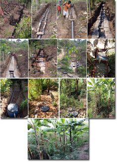 Strawberry Fields Eco Lodge: Kitchen Grey-Water System Report of Implementation & Design Update (Ethiopia)