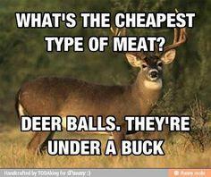 Deer balls!