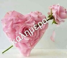 Beautiful Pink Roses, Happy Day, Mom And Dad, Good Morning, Beauty Hacks, Monogram, Messages, Mornings, Night