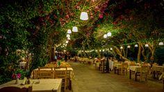 Kos Town, Greece by Alex Galenko