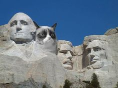 Grumpy Cat features on Mt Rushmore