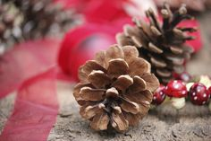 How to make natural Christmas decorations | eHow UK