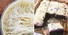 Rýchly hrnčekový makový koláč s višňami - Receptik.sk Thing 1, Kiwi, Ale, Cabbage, Vegetables, Food, Ale Beer, Essen, Cabbages