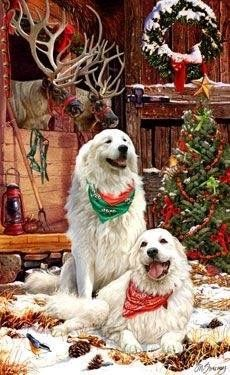 New for Quantities Limited! Great Pyrenees Christmas Cards are Christmas Scenes, Christmas Animals, Christmas Cats, Christmas Tables, Modern Christmas, Scandinavian Christmas, I Love Dogs, Cute Dogs, Animals And Pets
