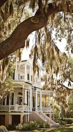 old southern homes-growing up in Louisiana has made me want to restore an old plantation! Southern Plantation Style, Plantation Style Homes, Old Southern Homes, Southern Belle, Southern Charm, Southern Mansions, Southern Porches, Country Porches, Southern Living Homes