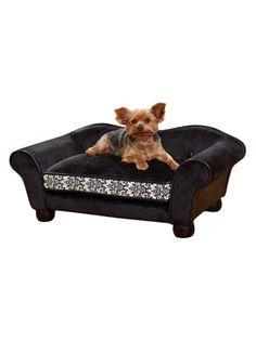 Sassy Pet Sofa Bed