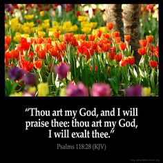 """✝✡Trust in the LORD Jesus-Yeshuawith all thine Heart✡✝ ( Psalms 118:28 KJV )""""Thou art my God, and I will praise Thee: thou art my God, I will exalt Thee.""""!! ( John 14:6 KJV ) """"Jesus saith unto…"""