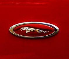Jaguar Car Logo, Jaguar Cars, Classic Sports Cars, Classic Cars, Car Hood Ornaments, Seasonal Image, Red Filter, Winter Images, Car Logos