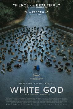 """""""White God"""" #Sundance This is a great movie, so many great actor doggies! The hard-to-watch scenes don't last too long. The ending makes it worth it."""