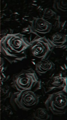 Sbgx In 2019 Wallpaper Backgrounds Black Wallpaper Black Rose Flowers Black Background Black Background . Black Roses Wallpaper, Black Aesthetic Wallpaper, Aesthetic Backgrounds, Aesthetic Iphone Wallpaper, Aesthetic Wallpapers, Glitch Wallpaper, Sad Wallpaper, Iphone Background Wallpaper, Pretty Wallpapers