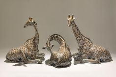 Nick Mackman - Giraffes Three Graces