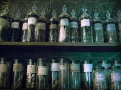 Potion ingredients In the dungeon for potions class