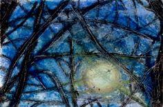 VisionDialogue Blog  new Post - Tree no. 2