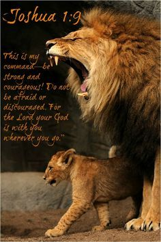 "beliefpics: "" Strong words #courageous #stand! #Joshua 1:9…More at http://beliefpics.christianpost.com/ #bible #GOD """