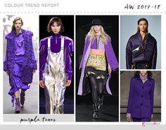 purple colour trend