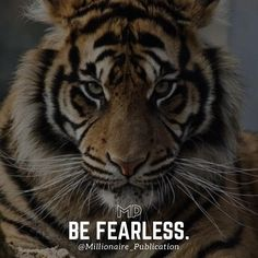 Double tap if you agree! #inspire #inspiration #motivation #motivate #entrepreneur #success #ambition #mindset #hustle #workhard #hardwork #strength #millionaire #billionaire #money #rich #dreambig #supercar #suit #success #is #a #mindset #be #fearless #aspire #to #inspire #wealth #tiger #insta #instagood #instagram