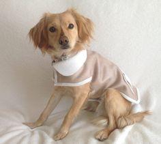 Abrigo perro reversible Impermeable chaleco Cazadora  por MuckaPets