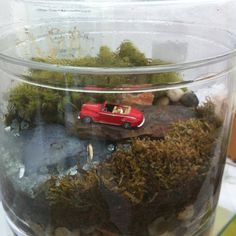 Terrarium in a jar. Love the little scene inside!