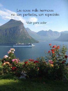 Las cosas más hermosas no son perfectas, son especiales. ♥️