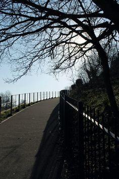 Greenwich nature