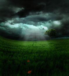 Stunning Photo Manipulations by Emerald-Depths http://www.cruzine.com/2013/07/15/stunning-photo-manipulations-emeralddepths/