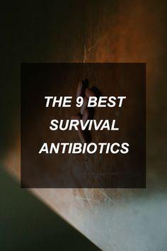 The 9 Best Survival Antibiotics | Survival Shelf | Survival & Preparedness Links
