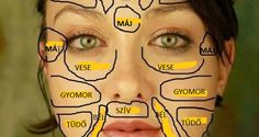 Traditional Chinese medicine claims that each part of the face is related to certain organs in your body. Here is how this chinese face map looks like. Chinese Face Map, Gesicht Mapping, The Face, Face Mapping, Heart And Lungs, Body Organs, Facial Massage, Massage Tips, Traditional Chinese Medicine