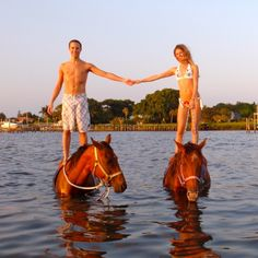 What I would like to do while on vacation...Horse Surfing, Bradenton  come by and visit us on facebook - at Sarasota Vacation Rental or Sarasota Photography!