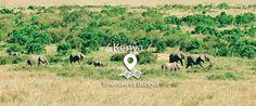 Safari de 8 jours au Kenya ; Itinéraire et infos pratiques – Les 3 M en vadrouille – Blog voyage