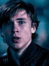Peters face Just kills me. You can see so many emotions in bis face. I think that William was the best actor vor Peter Pevensie. Peter Pevensie, Edmund Pevensie, Narnia Movies, Narnia 3, Digimon, William Moseley, Harry Potter, Ben Barnes, The Avengers