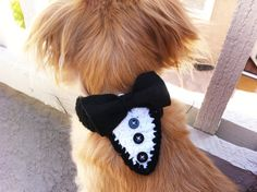 Custom Knit Tux collar 36 color opitions by DaniDoggiestuff, $9.00