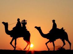 sunset-desert-safari-jaisalmer