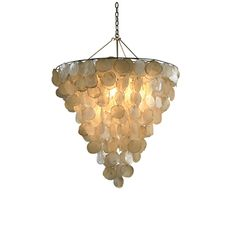 Serena Rustic Shell Chandelier by Oly Lighting