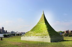 Flower Pyramid by Agnes Denes, New York, USA