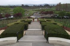 Domaine Carneros Winery, Napa, California View from the outside tables.