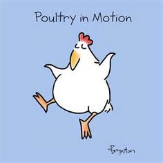 Sandra Boynton - March 19 is Poultry Day. Best of cluck. Chicken Jokes, Cartoon Chicken, Chicken Signs, Sandra Boynton, Chicken Painting, Chicken Art, Chickens And Roosters, Galo, Watercolor Cards