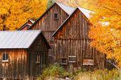 *Farm buildings