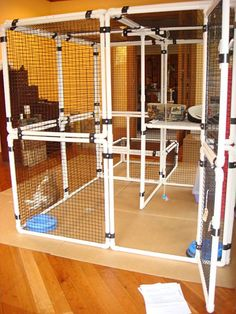 Pretty cool setup for an indoor enclosure or outdoor catio Indoor Cat Enclosures, Diy Cat Enclosure, Outdoor Cat Enclosure, Reptile Enclosure, Cat Habitat, Diy Bird Cage, Cat Pen, Cat Cages, Cat Towers