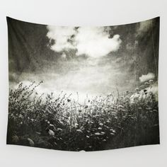 flowers, field, meadow, black and white...