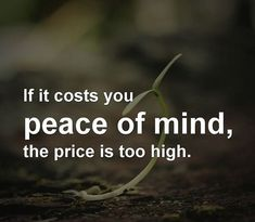 Peace Of Mind Quotes I Have No Desire To Argue With Anyone I Choose