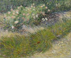 Vincent Van Gogh「Grass and Butterflies」