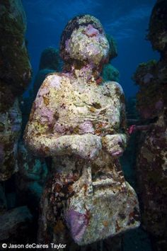 The Silent Evolution - Underwater Sculpture by Jason deCaires Taylor Jason Decaires Taylor, Underwater Sculpture, Ancient Discoveries, Undersea World, Ancient Ruins, Underwater World, Corals, Under The Sea, Wonderful Places