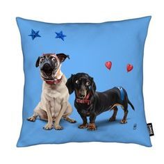 What's the Deely? - Rob Snow | Creative - Cushion gift | female | dog | ideas | inspiration